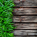 Fresh green grass and Wood Royalty Free Stock Photo