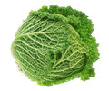 Fresh green head of cabbage. Royalty Free Stock Images