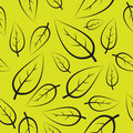 Fresh green leafs pattern Royalty Free Stock Images