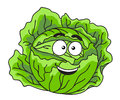 Fresh green leafy cabbage vegetable head of farm with a happy smile cartoon illustration isolated on white Royalty Free Stock Photography