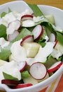 Fresh green salad with apple Stock Images