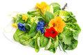 Fresh green salad with edible garden flowers. Healthy food Royalty Free Stock Photo