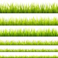 Fresh and green spring grass sprouts and herbal growth seamless banners. Springtime lawn panorama in a sunlight. Foliage lines for