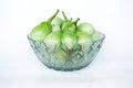 Fresh green Thai eggplant Royalty Free Stock Photo
