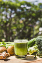 Fresh green vegetable juice refreshing and fruit Stock Photography