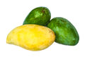 Fresh green and yellow mango on white background Stock Photography