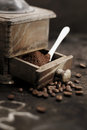 Fresh ground coffee grains Royalty Free Stock Images