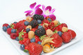 Fresh group  summer fruits. Stock Images