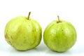 Fresh Guava fruit Royalty Free Stock Photo