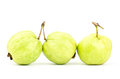 Fresh guava fruit tropical on white background Royalty Free Stock Photography