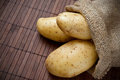 Fresh harvested potatoes in burlap bag Royalty Free Stock Photo