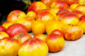 Fresh Heirloom Tomatoes Royalty Free Stock Photography