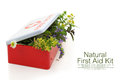 Fresh herbs in first aid kit on white background Royalty Free Stock Photography