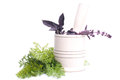 Fresh herbs mortar and pestle to grind the leaves green seasoning Royalty Free Stock Photography