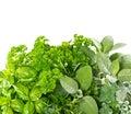 Fresh Herbs Over White Backgro...