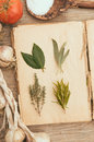 Fresh herbs on vintage cook book Stock Photography
