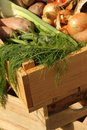 Fresh home grown vegetables in a wooden box Royalty Free Stock Photo