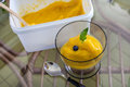 Fresh home made mango ice sorbet Stock Photography