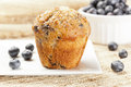 Fresh Homemade blueberry Muffin Stock Photos