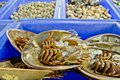 Fresh horseshoe crab in market of Thailand Stock Photos