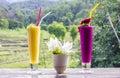 Fresh jackfruit juice and dragon fruit juice Royalty Free Stock Photo