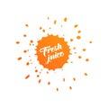 Fresh juice logo