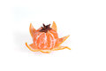 Fresh juicy bright mandarin decorated with anise and vanilla sticks on a white background.