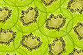 Fresh juicy kiwi fruit texture slice Royalty Free Stock Photo