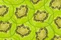 Fresh juicy kiwi fruit texture slice Royalty Free Stock Photo