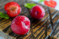 Fresh juicy plums with drops Royalty Free Stock Photo