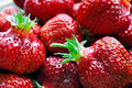 Fresh juicy strawberries Royalty Free Stock Photos