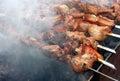 Fresh kebab prepares on the fire Royalty Free Stock Image
