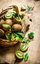 Fresh kiwi fruit in an old basket with leaves. Royalty Free Stock Photo
