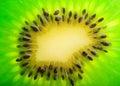 Fresh kiwi slice closeup extreme details Royalty Free Stock Image
