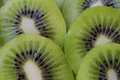 Fresh kiwi slice on white plate background Royalty Free Stock Image
