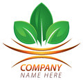 Fresh leaf logo a healthy nature icon image Royalty Free Stock Images