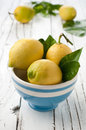 Fresh lemon Stock Photography