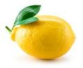 Fresh lemon fruit with leaves isolated on white Royalty Free Stock Photo