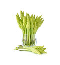Fresh lemon lily or chinese day lily in glass on white background Royalty Free Stock Images