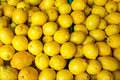 Fresh lemon for sale yellow at the fruit market Royalty Free Stock Image