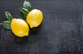 Fresh lemons on the dark wooden background Royalty Free Stock Photo