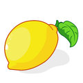 Fresh lemons isolated illustration on white background Stock Photo