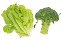 Fresh Lettuce And Broccoli Stock Photos