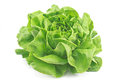 Fresh lettuce isolated on white Royalty Free Stock Photos