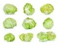 Fresh lettuce isolated on the white background Royalty Free Stock Photo