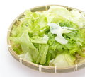 Fresh lettuce salad on white background Royalty Free Stock Photo