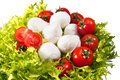 Fresh lettuces salad with red fresh tomatoes and italian cheese mozzarella Stock Image