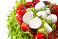 Fresh lettuces salad with red fresh tomatoes and italian cheese mozzarella Royalty Free Stock Photography