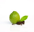 Fresh Lime. Royalty Free Stock Image