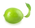 Fresh lime with one green leaf full placed on white background close up studio photography Royalty Free Stock Photo